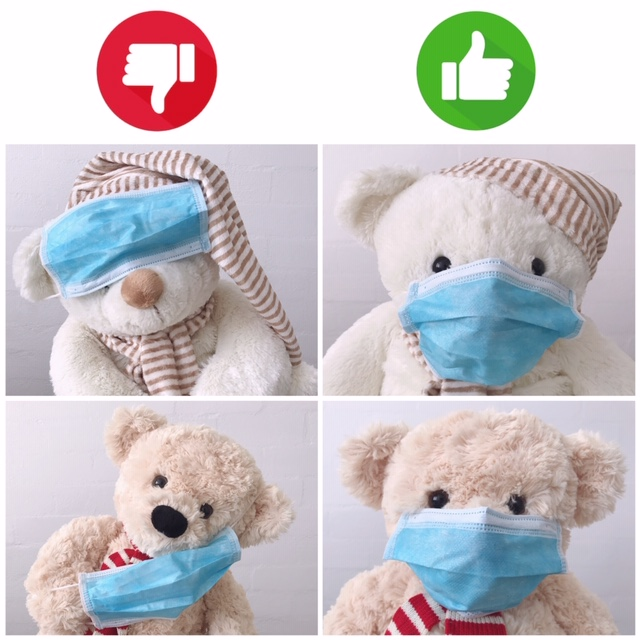 teddy bear photos with facemask